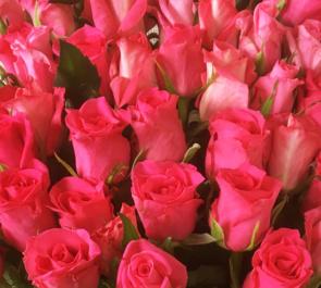 公演祝い花束ピンク