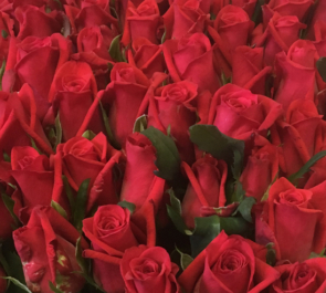 喜寿祝い 77歳誕生日プレゼント赤バラ花束77本