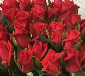 赤バラ花束32本