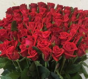 定年退職祝い赤バラ60本